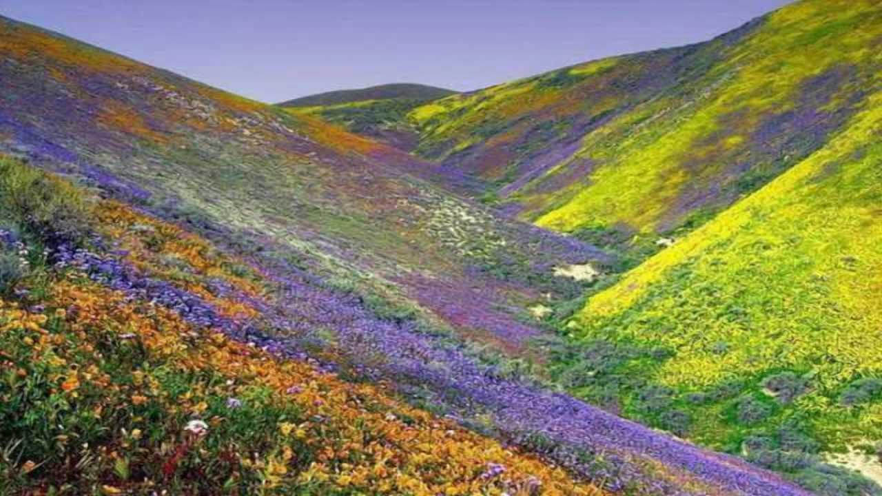 beautiful landscapes of iran