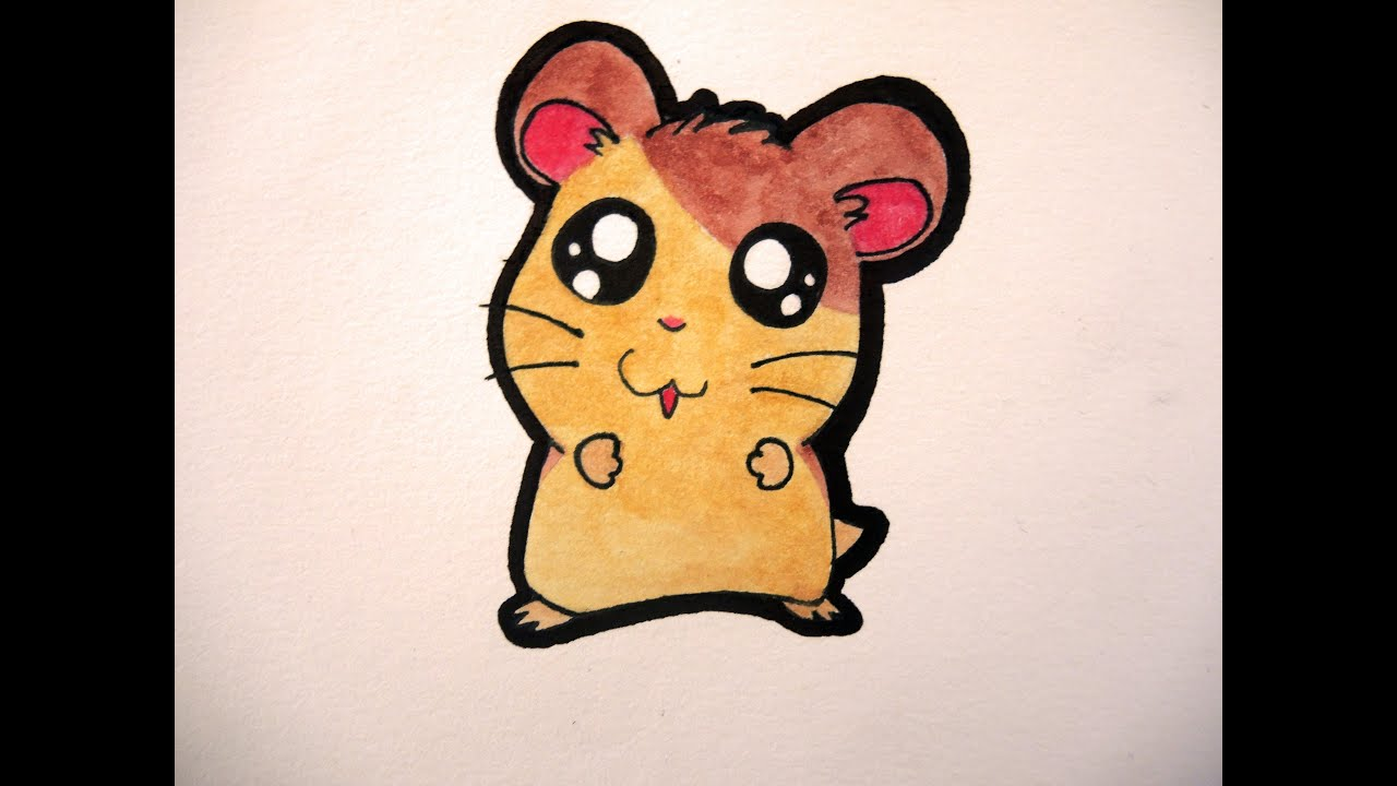 Uncategorized How To Draw A Cute Hamster how to draw a cute hamster hamtaro youtube