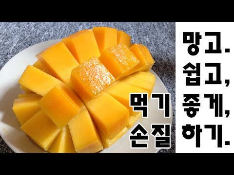 망고 손질 하는 법 / How to cut a mango / 알쿡 / RMT