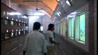 Watch The AQUARIUM in KOLKATA - WEST BENGAL (INDIA)
