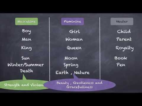 Nouns : Gender , Number and Case