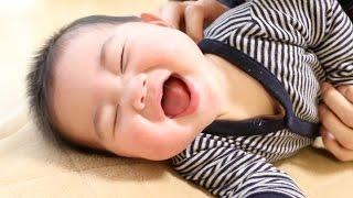 【赤ちゃん】パパのくすぐり攻撃に大笑い【癒し】