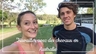 Travailler avec des chevaux en Australie - Part 1 - Travel Your World