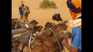 Descubre el desierto de Merzouga con Rutas Marruecos 4x4