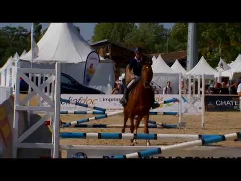 Salon du cheval 2015 toulouse ana s lev photographie - Salon cheval toulouse ...