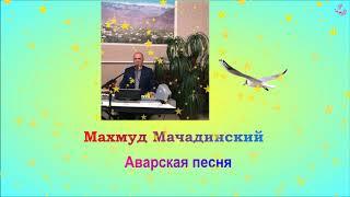 Аварская песня поет Махмуд Мачадинский