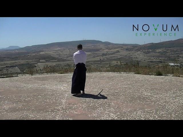 09 Menuchi ushiro tsuki  -Aikido Novum Experience - Jo Suburi Nijuppon -  面打ち後ろ突き -杖素振り20本 -打ち込み5本