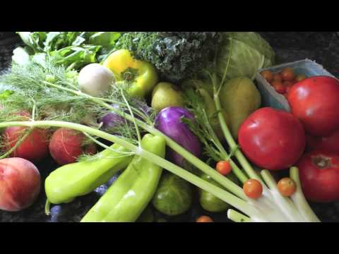 Alimentos para insuficiencia renal funnydog tv for Alimentos prohibidos para insuficiencia renal