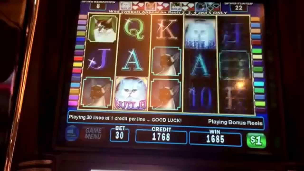Slot machine wins youtube online bitcoin casino