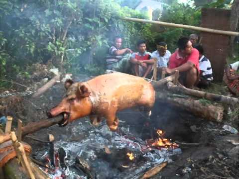 babi guling youtube