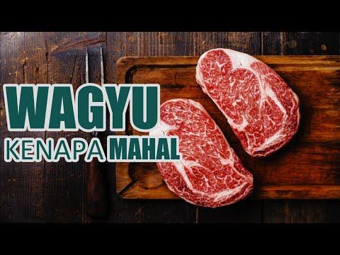 fakta-unik-daging-wagyu---jenis-daging-sapi