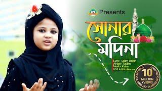 সোনার মদিনা প্রাণের মদিনা   Sonar Madina praner Madina   Tasbin   Islamic  Song   Sunni Media CTG