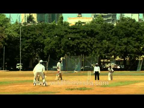 Cricket match in Mumbai maidan