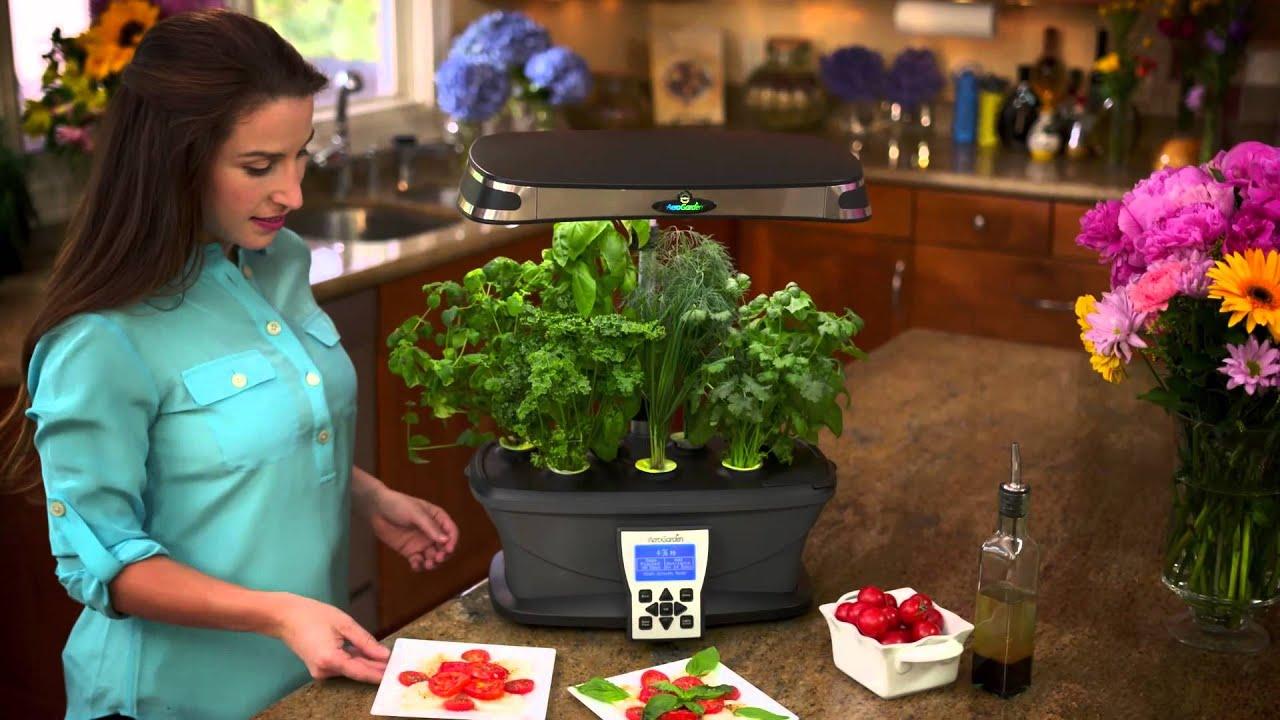 AeroGarden Commercial - The Extraordinary Soil-Free Indoor Garden ...