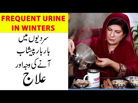 Frequent Urine Problem Treatment In Winters By Dr. Bilquis