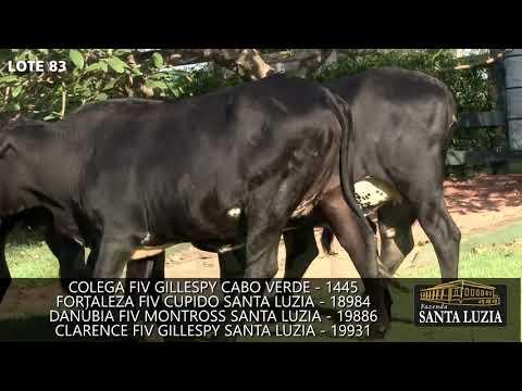 SANTA LUZIA   LOTE 83