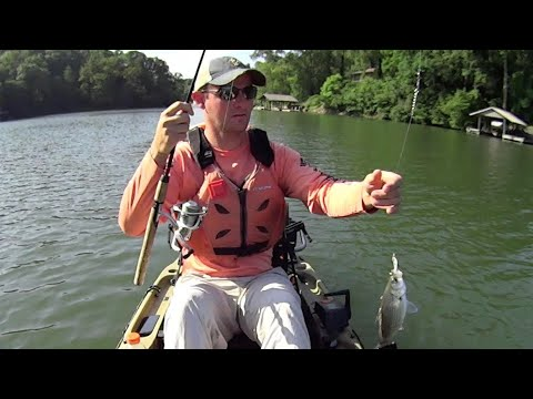 How To Troll Spoons For White Bass