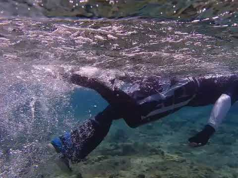 AK Amputee Shinfins Snorkel