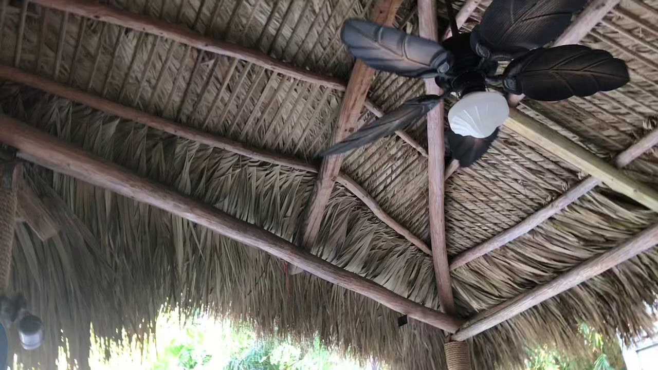 Hampton Bay Nau Ceiling Fan | Taraba Home Review on