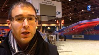 SIA 2015 : Exportation de la Prim'Holstein en baisse