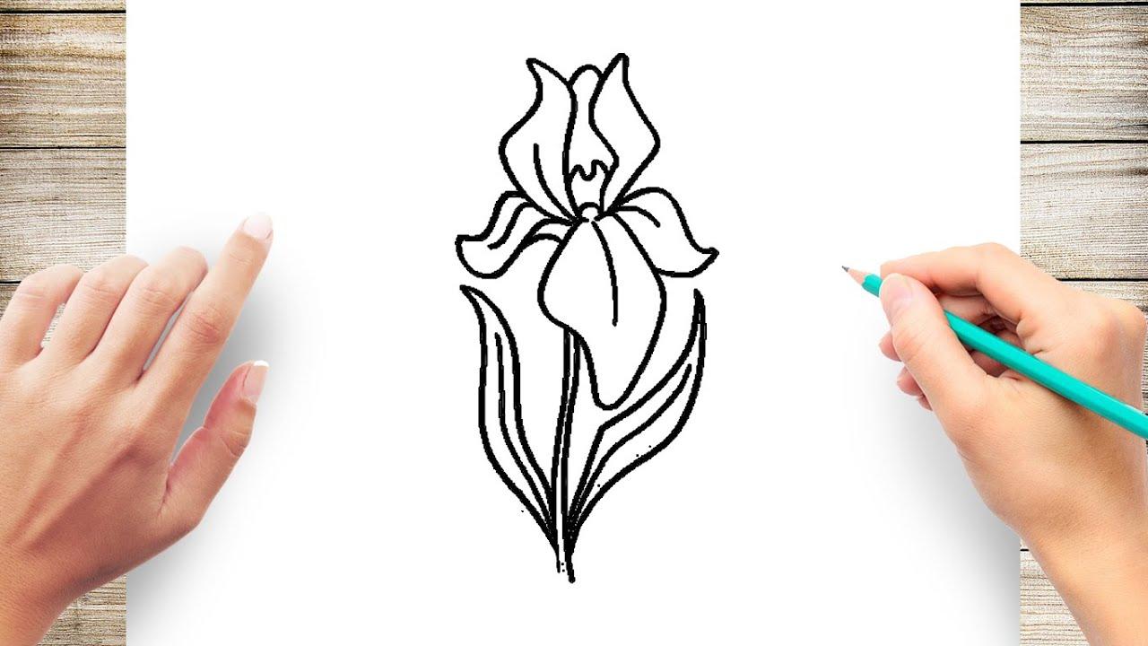 How To Draw Iris Flower Step By Step Youtube