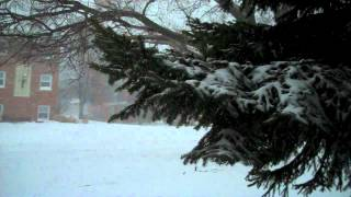 Snowpocalypse 2011: Chicago Thumbnail