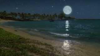 Fred Bongusto Guarda Che Luna testo