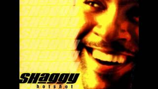 Shaggy - Leave It To Me