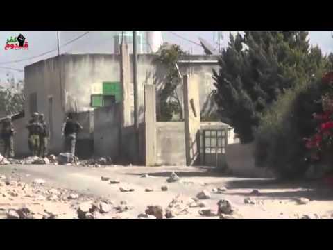 Aksi perlawanan WARGA PALESTINA terhadap TENTARA ISRAEL PRAY FOR GAZA Mp3