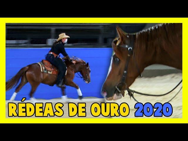 Cavalo de Rédeas- SNAFFLE BIT
