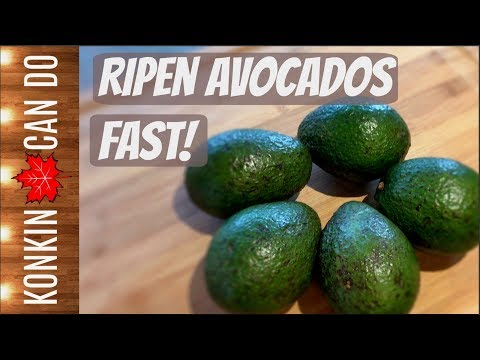 Fastest Way to Ripen Avocados - 5 Hacks Tested & Reviewed