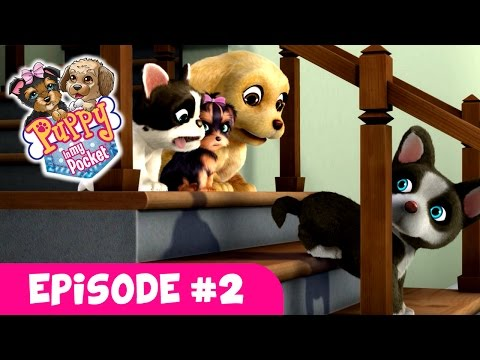 Puppy In My Pocket - Webisode #2