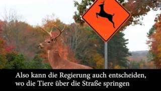 Wildwechsel-Schilder in den USA- So dumm kann man nicht sein!!!!