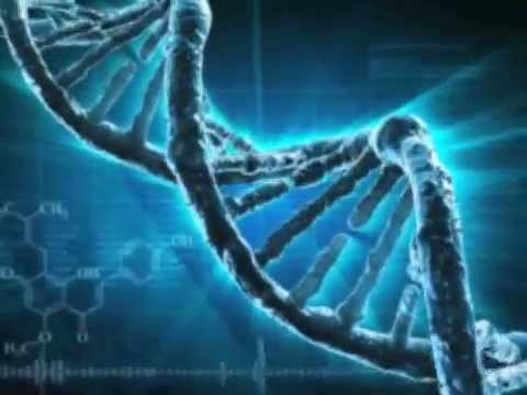 How Does Dna Testing Work Youtube