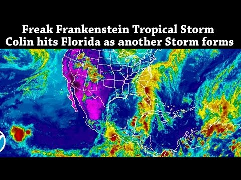 Freak Frankenstein Tropical Storm Colin hits Florida as another Storm begins to Form
