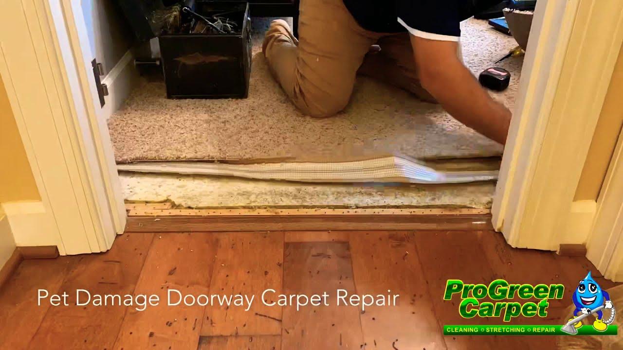 Carpet Repair in Raleigh, NC | Schedule