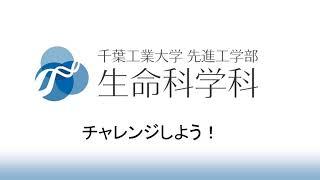 発表 大学 千葉 工業 合格