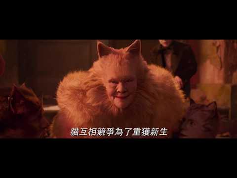 【CATS貓】卡司篇 - 12月24日 聖誕跨年壓軸鉅獻
