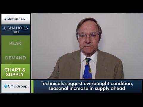 June 11 Livestock Commentary: Terry Roggensack