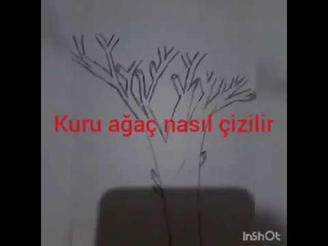 Kolay Kuru Ağaç Nasıl çizilir Youtube