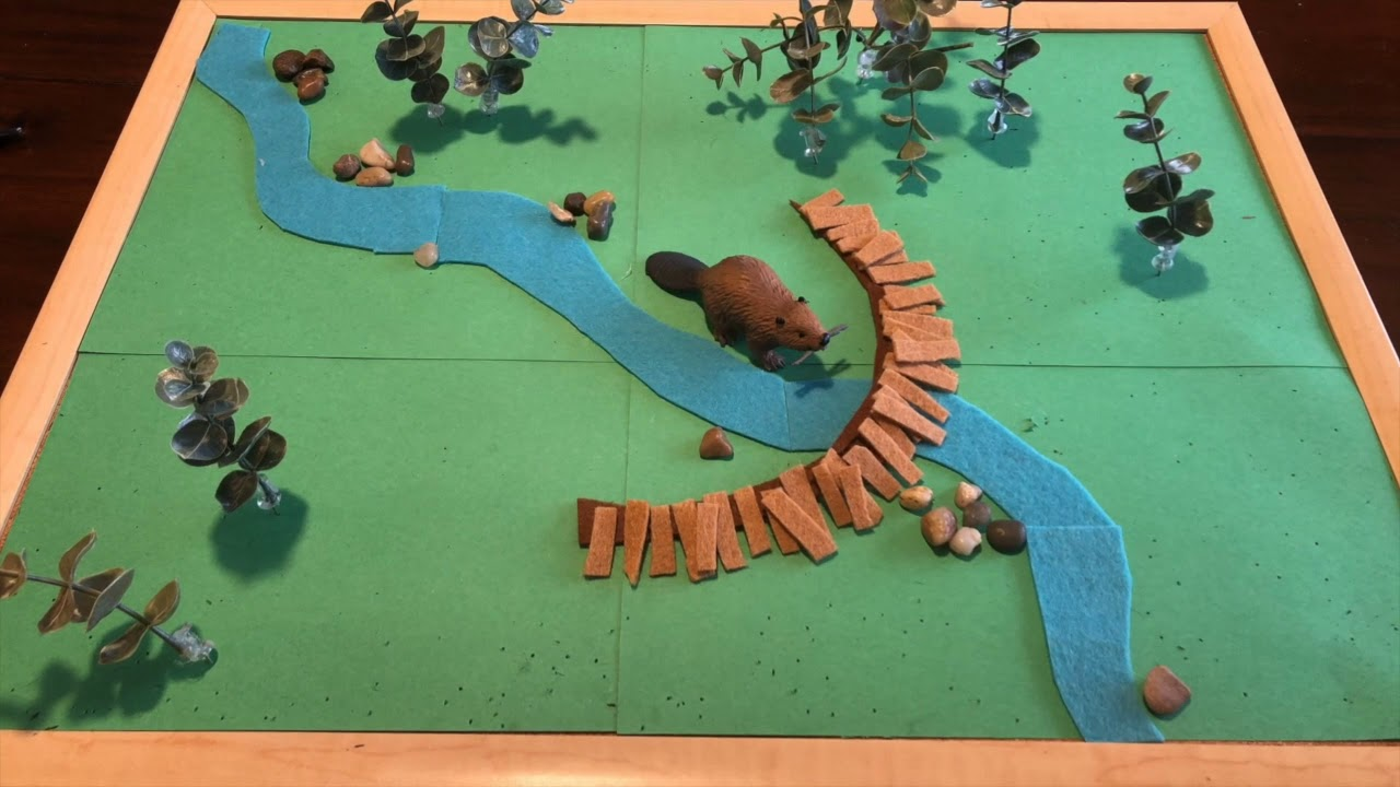 Beavers and Wildfire: a stop-motion story by Emily Fairfax