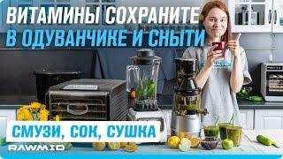 Витаминный коктейль из дикоросов  Полезные рецепты из травы