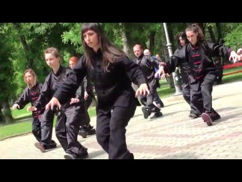 World Tai Chi and Qigong Day in Macedonia, Skopje (30.04.2016)
