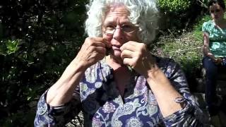 Foraging for Natural Pain Killers - Wild Weed Walk with Kate Armstrong