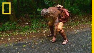 Video Running for Road Kill | The Legend of Mick Dodge download MP3, 3GP, MP4, WEBM, AVI, FLV Maret 2017