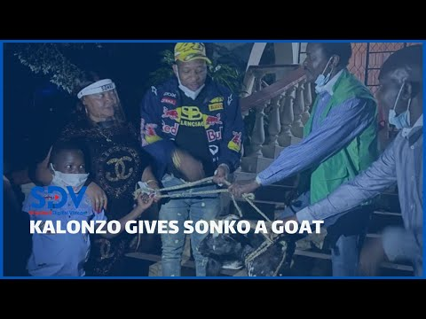 Sonko receives goat as a form of 'political blessing' from Kalonzo while visiting his Yatta home