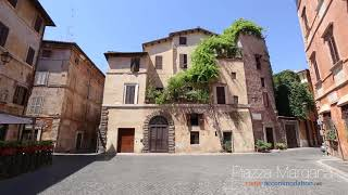 Large apartment in piazza Margana with interior terrace - Rome Accommodation