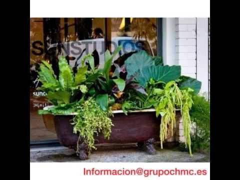 recicla una baÑera para tu jardin - youtube