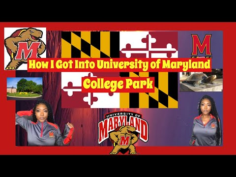 How I Got Into My Dream School | UNIVERSITY OF MARYLAND | Transfer Student