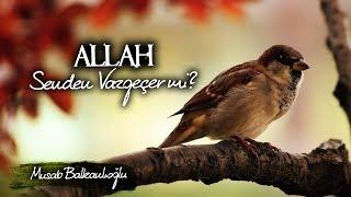 Allah Senden Vazgeçer mi Hiç?  Umudun Yoksa Dinle  Musab Balkanlıoğlu